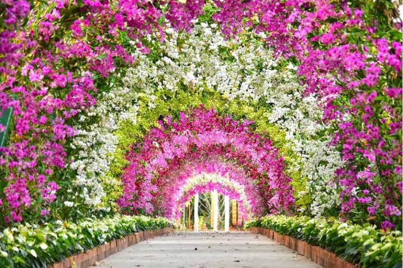 چه چیزهایی باعث ورود انسان به بهشت میشوند؟