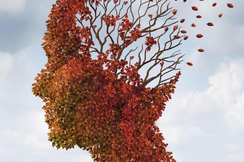قربانیان کلاهبرداری  در معرض ابتلا به آلزایمر