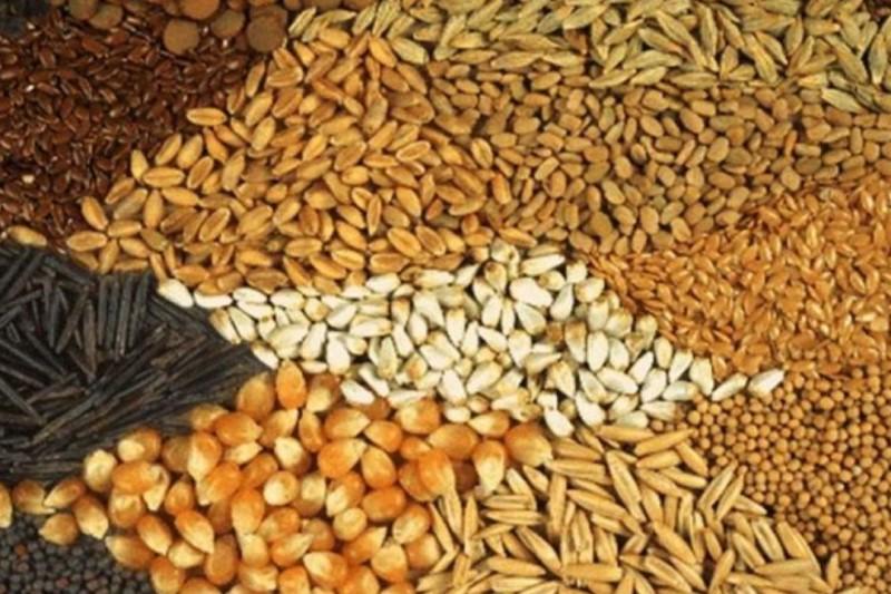نرخ نهادههای دامی و کشاورزی در بازار +جدول