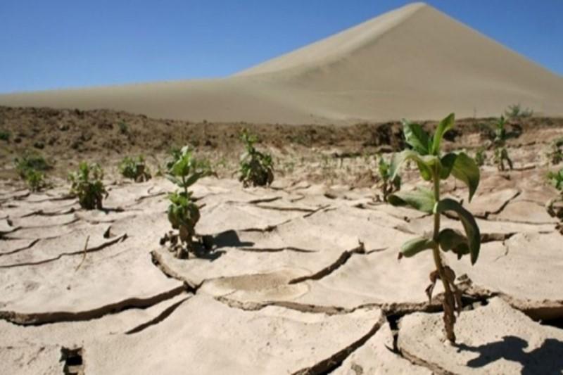 بارندگیهای نرمال از خشکسالیهای اخیر کاهش داده است