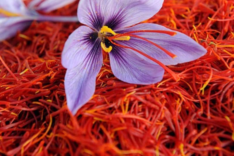 افزایش نرخ سایر کالاها بر بازار زعفران دامن زد