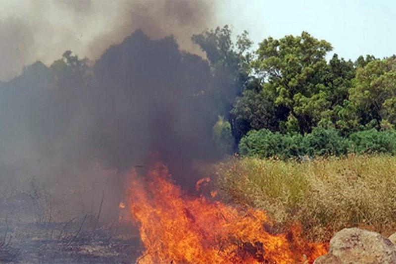 آتشسوزی گسترده در مرکز سرزمینهای اشغالی +تصویر