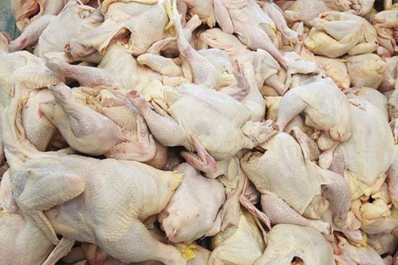 کشف نیم تن گوشت مرغ و ضایعات از عمده فروشی