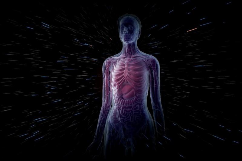 حقایقی شگفت انگیز درباره بدن انسان