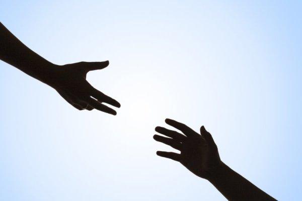 مومنان به ولایت در چه زمینه ای ورود کنند؟