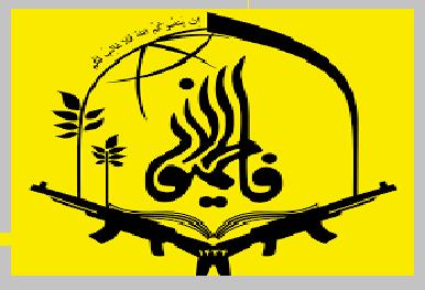 قدردانی قرارگاه جهادی فاطمیون از مجاهدت خادمان پویشهای کمک مؤمنانه