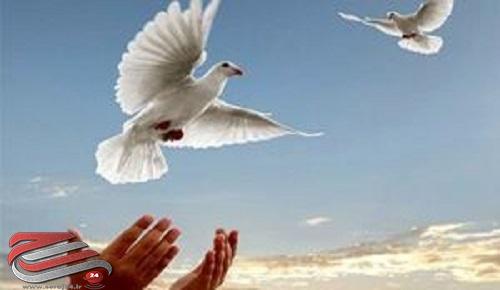 کمک ۱۰۰ میلیونی خانواده شهید کریمی برای آزادی زندانیان
