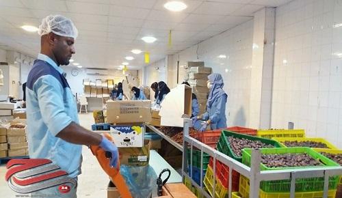 جزئیات 4200 فرصت شغلی توسط بنیاد برکت در بوشهر