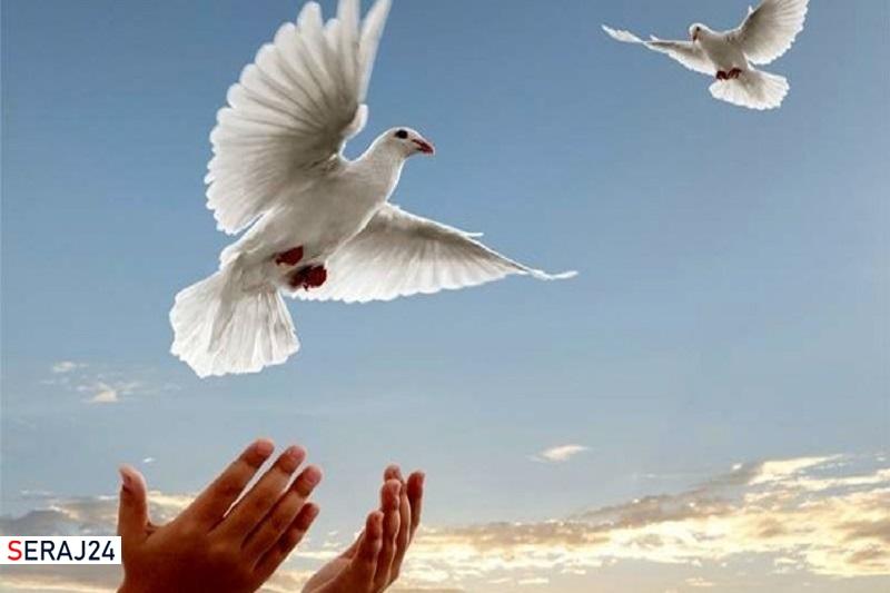 برکات کمک مومنانه، از توزیع 16 میلیون بسته کمک معیشتی تا آزادی 4 هزار نفر