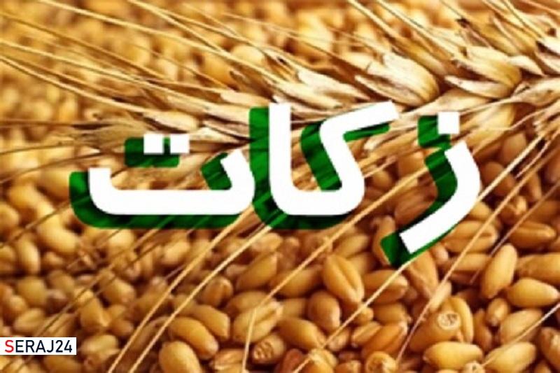 پرداخت زکات در زنجان ۲۵۳ درصد رشد دارد