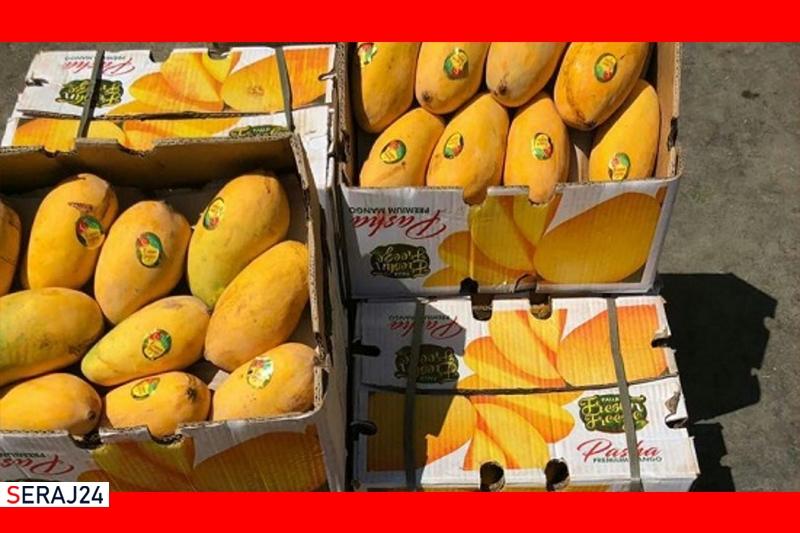 انتقال ویروس کرونای هندی از طریق میوههای وارداتی صحت ندارد