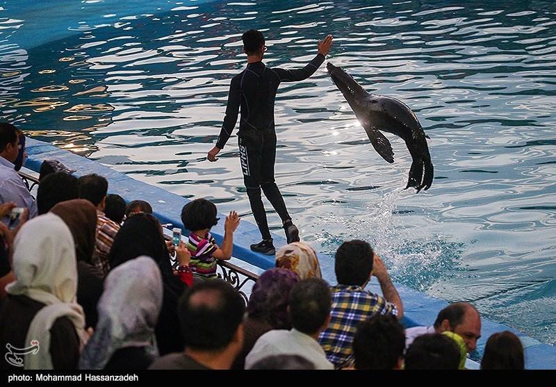 تصاویر داخل برج میلاد تهران