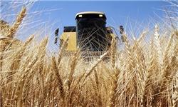دستور ویژه نوبخت برای پرداخت مطالبات ۶۵۰میلیارد تومانی کشاورزان