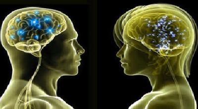 بله! سیمکشی مغز آقایان و خانمها واقعا با هم فرق میکند! + عکس
