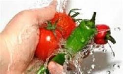 ۴ مرحله استاندارد و ضروری برای سالمسازی میوه و سبزی از میکروب و انگل