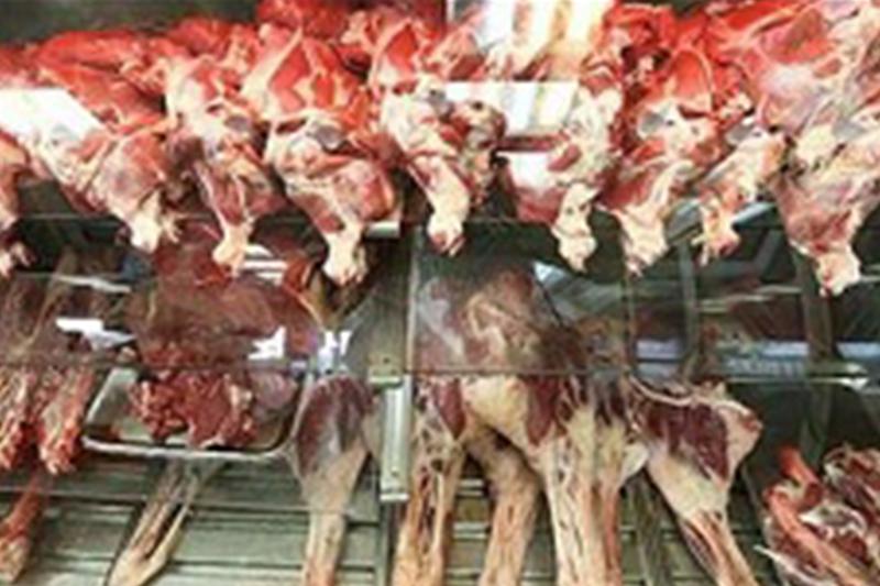 گوشت گوسفندی گران شد