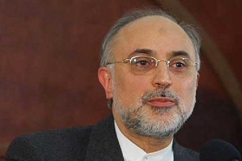 ورود صالحی به مذاکرات هسته ای ایران و ۱+۵